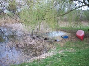 pond, decrepit old dock mar 2012 (10)