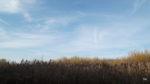Sky - today
